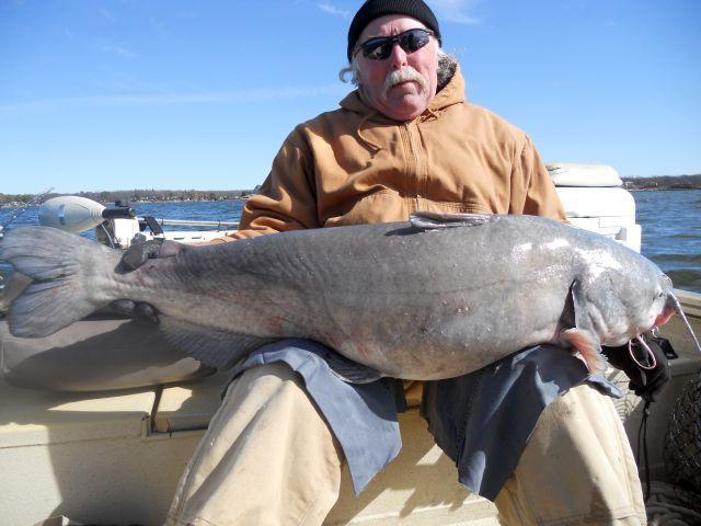 Cedar creek blue cat are biting catfishing texas for Cedar creek lake fishing