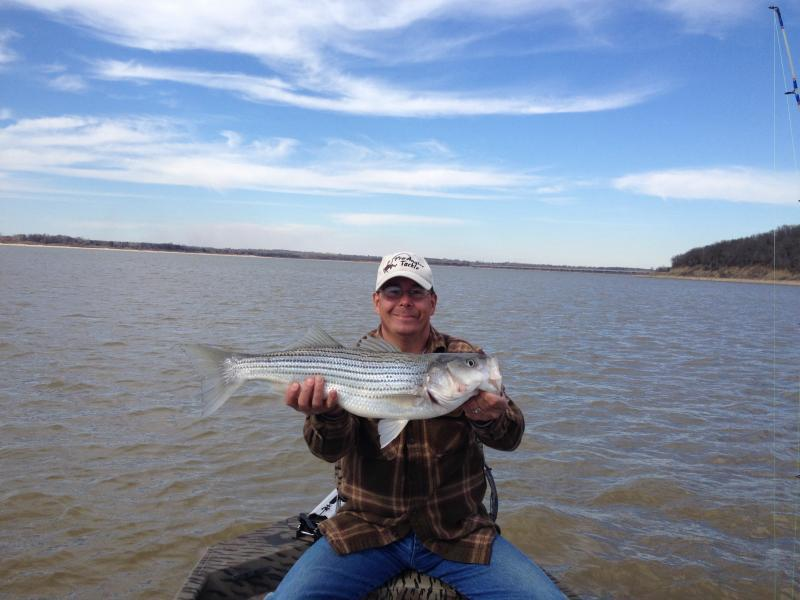 Texoma today whites hybrids striper texas fishing for Today fishing times