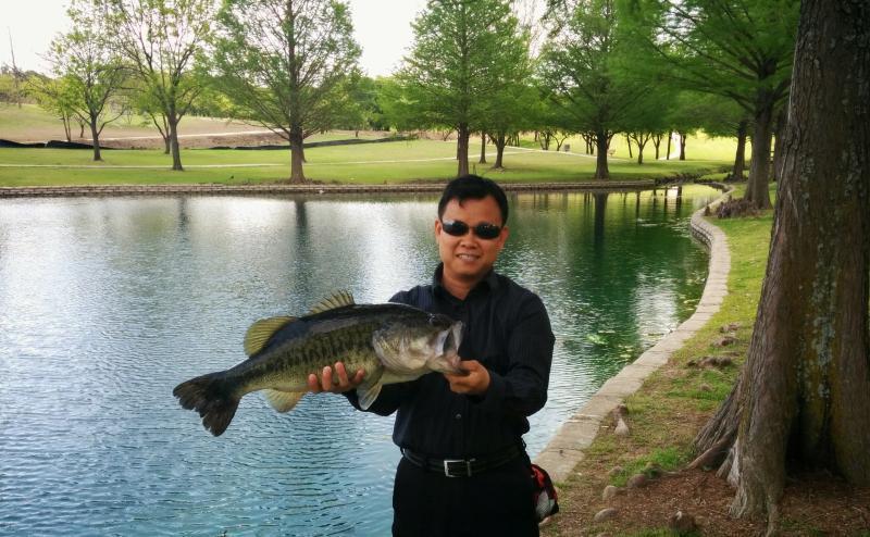 Palos verdes lake park bank fishing texas fishing forum for Banks lake fishing