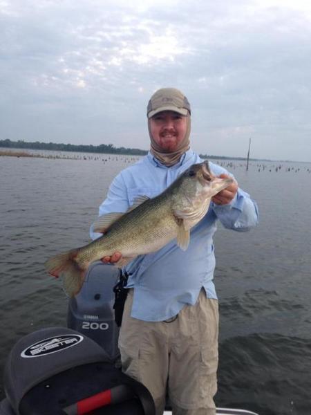 Top water bite bass fishing texas fishing forum for Top water bass fishing