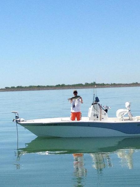Found em on lake ray hubbard saturday and sunday whites for Lake bryan fishing