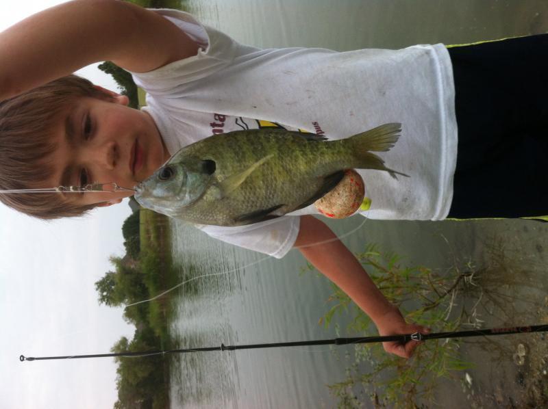 Best fishing memories bluegill sunfish texas fishing for Best fishing times texas