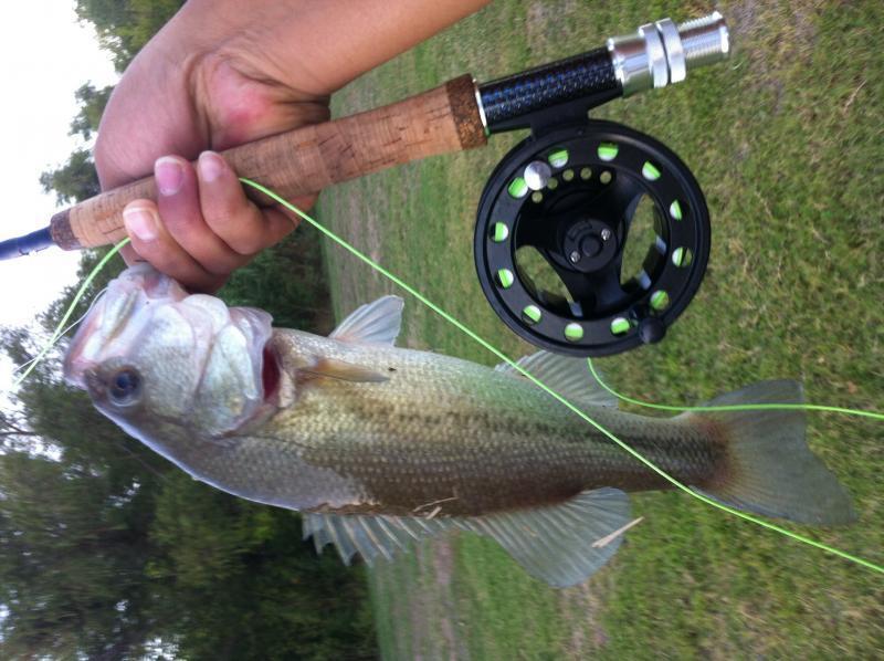 Fly fishing waco tx fly fishing texas fishing forum for Lake waco fishing report