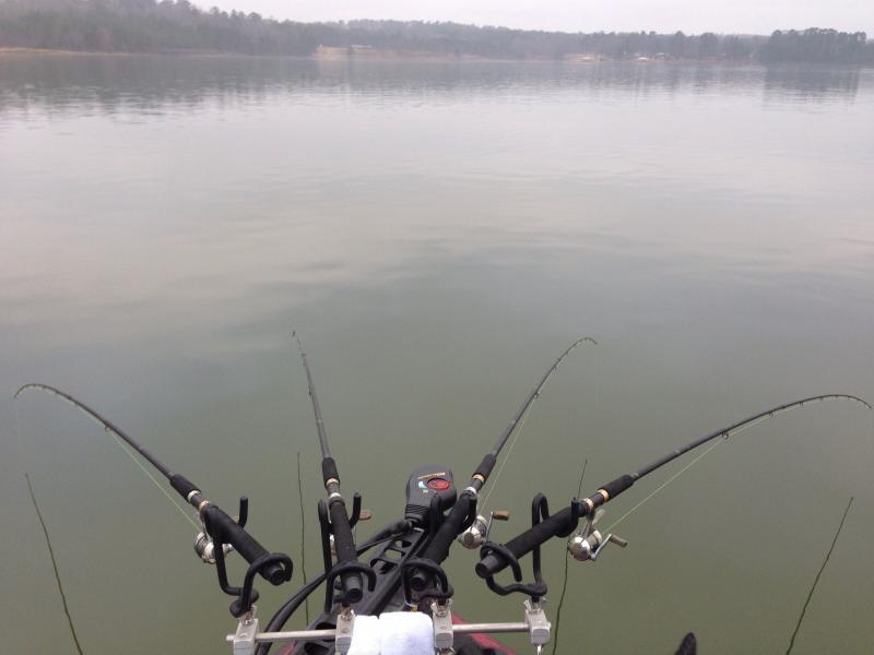 Spider rigging questions crappie fishing texas for Spider rigs for crappie fishing