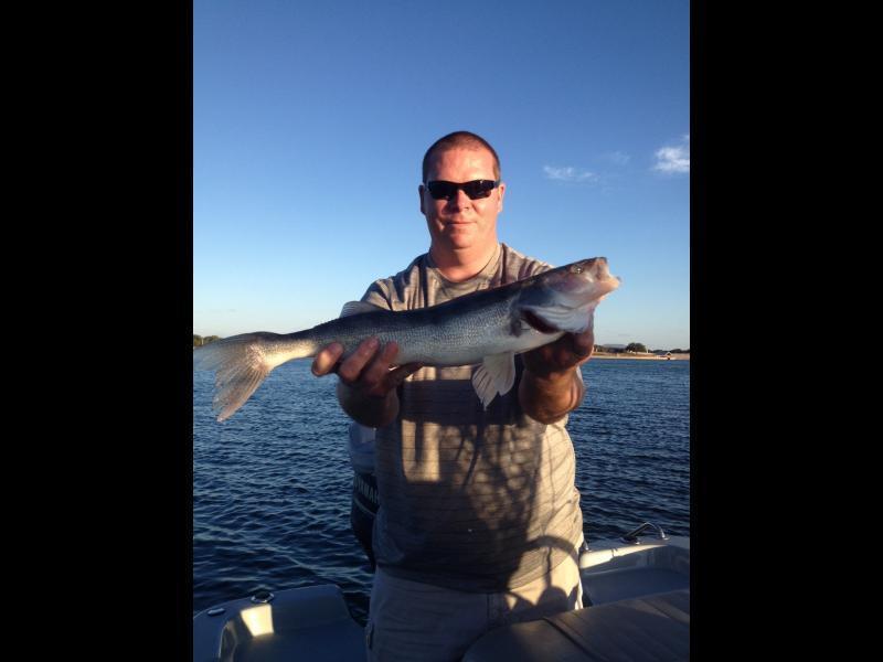 Wheeler branch report 11 30 kayak fishing texas for Wheeler lake fishing report