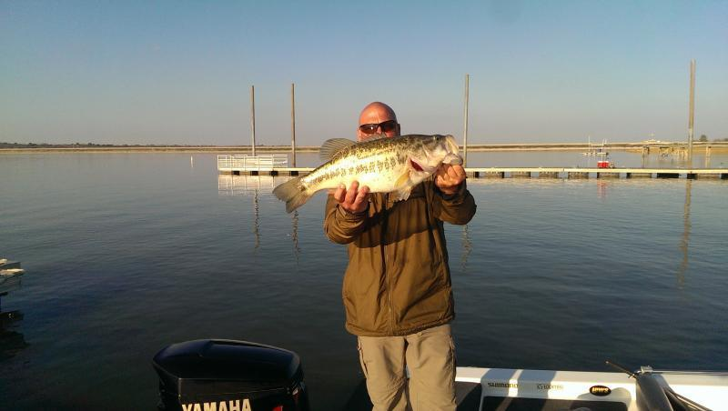 lake arlington help bass fishing texas fishing forum