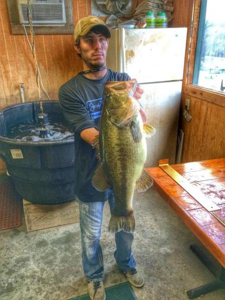 Toledo bend videos texas fishing forum for Franks great outdoors fishing report