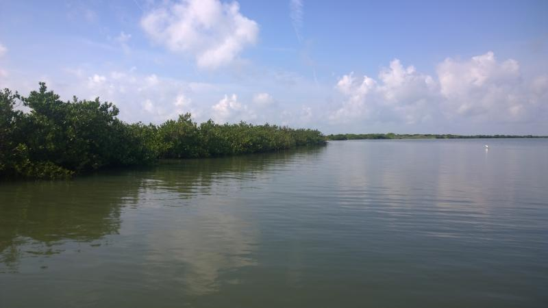 Real time fishing report aransas pass friday may 22nd for Aransas pass fishing