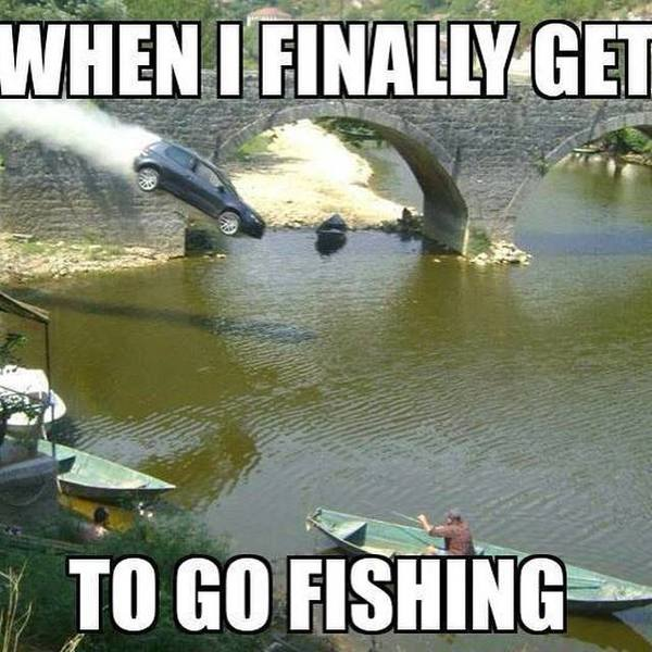 Funny fish memes - photo#1