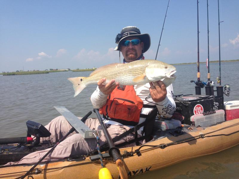 Fishing report galveston 8 14 8 16 kayak fishing for Galveston fishing report