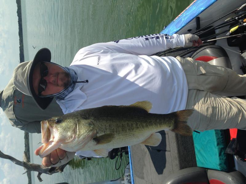 Fayette 8 7 2015 freshwater reports texas fishing forum for Fish sniffer forum