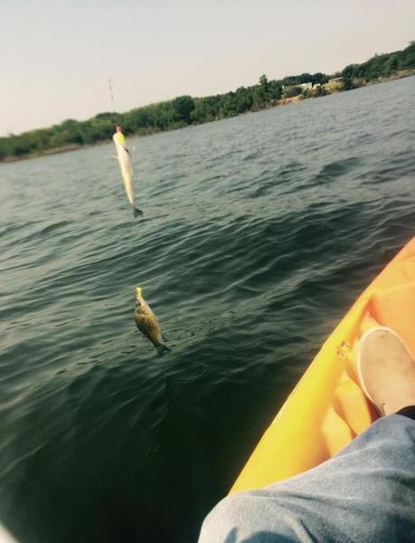 Lake lavon kayak fishing texas fishing forum for Lake lavon fishing