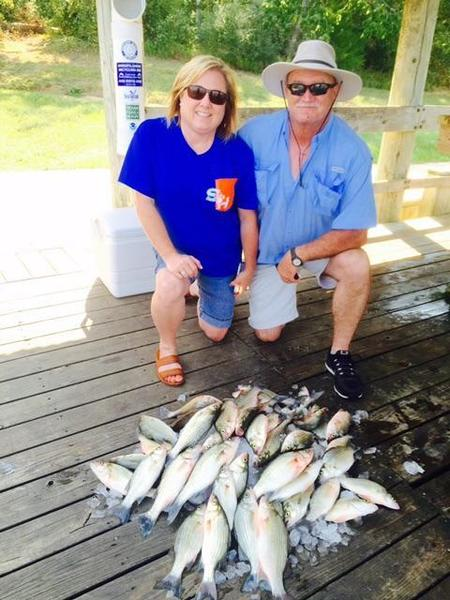Fishin addiction lake livingston guide report whites for Lake livingston fishing report