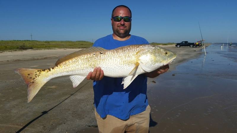 Bulls are in saltwater reports texas fishing forum for Texas saltwater fishing report
