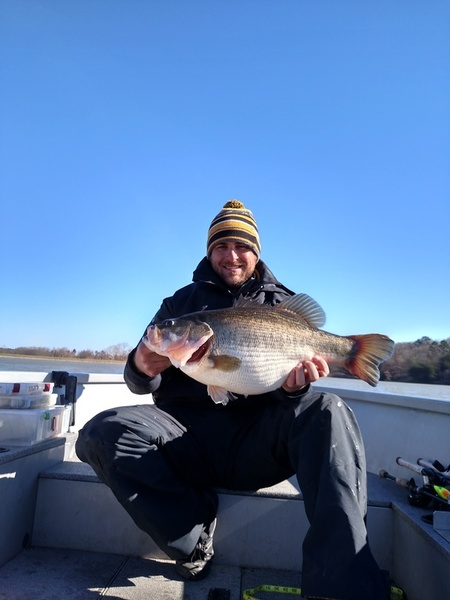 Personal best bass fishing texas fishing forum for Bass fishing texas