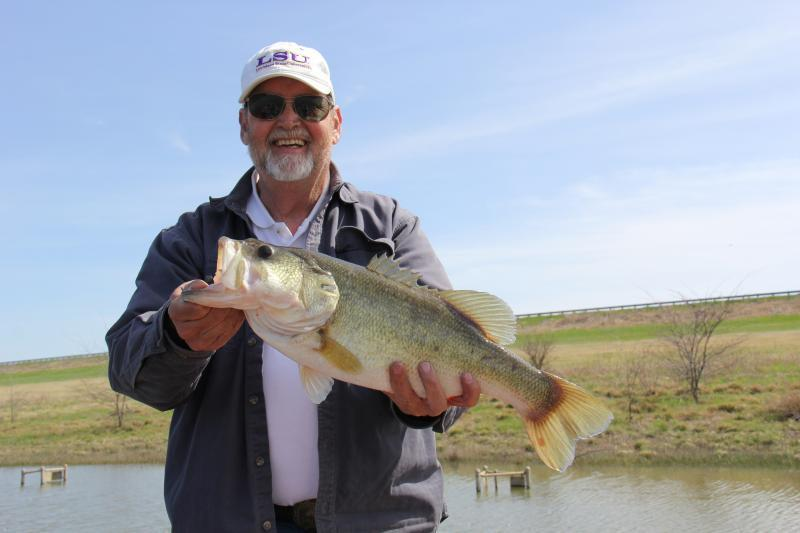 Bed fishing in dirty water or when windy bass fishing for Bed fishing for bass