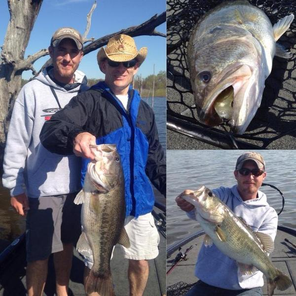 Lake fork report and mega bass tips big bass pics bass for Texas bass fishing guides