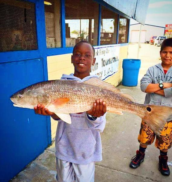 Galveston fishing report saltwater reports texas for Fishing report texas