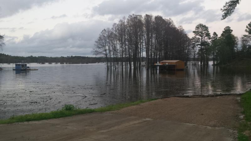 Caddo lake ramps louisiana side bass fishing texas for Caddo lake fishing report
