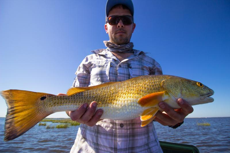 Mixed bag from delacroix island photos videos texas for Texas fishing bag limits