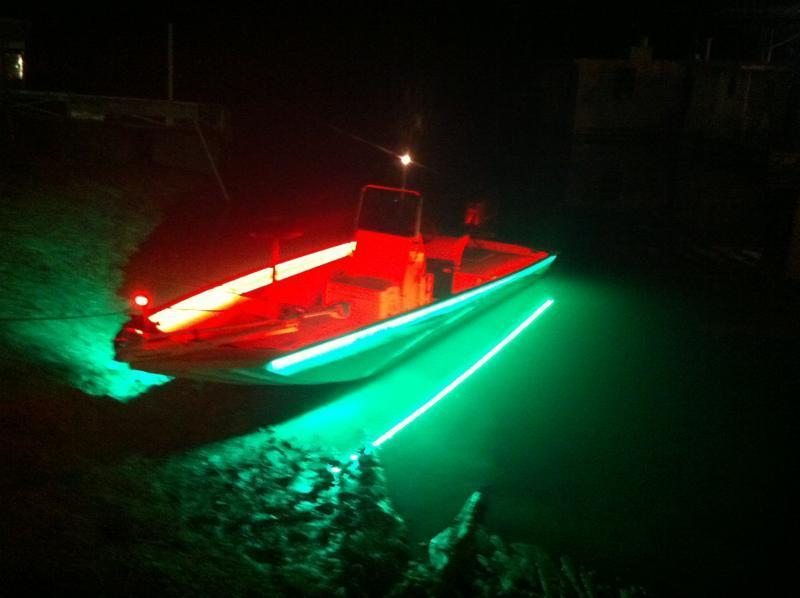 Night fishing light question whites hybrids striper for Best light for night fishing