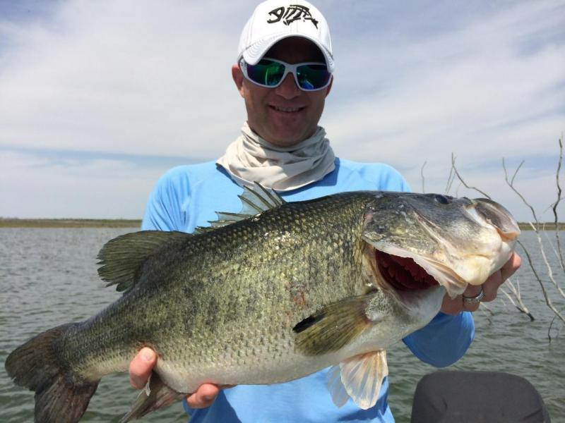 Lake conroe guide service plugs announcements texas for Lake conroe fishing
