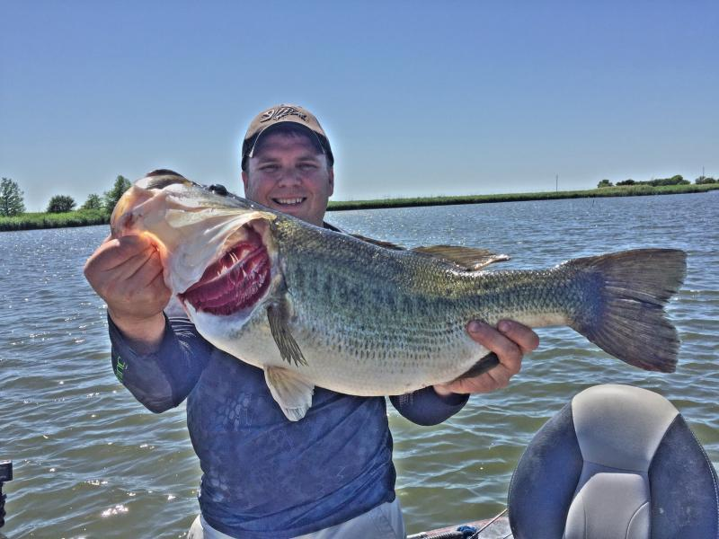 Show us your fish pic 39 s of 2016 bass fishing texas for South texas fishing
