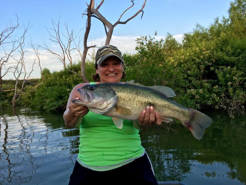 Wifey 39 s trophy bass bass fishing texas fishing forum for Bass fishing texas