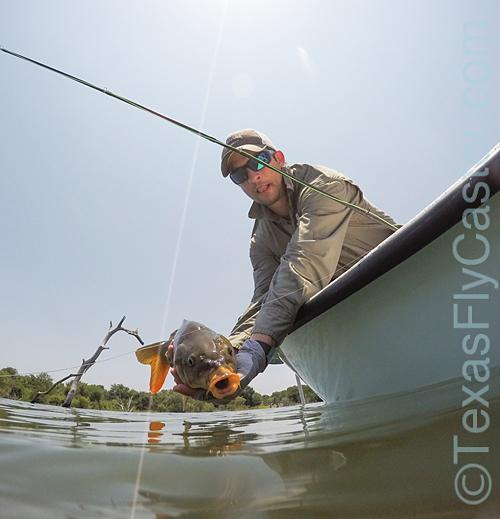 Guide reports fly fishing texas fishing forum for Fly fishing texas