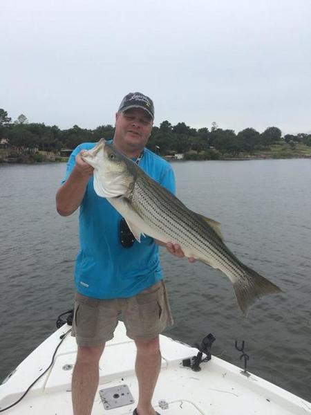 Lake buchanan pb striper whites hybrids striper for Lake buchanan fishing