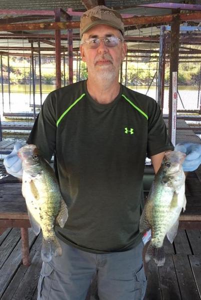 Texoma crappie crappie fishing texas fishing forum for Crappie fishing in texas