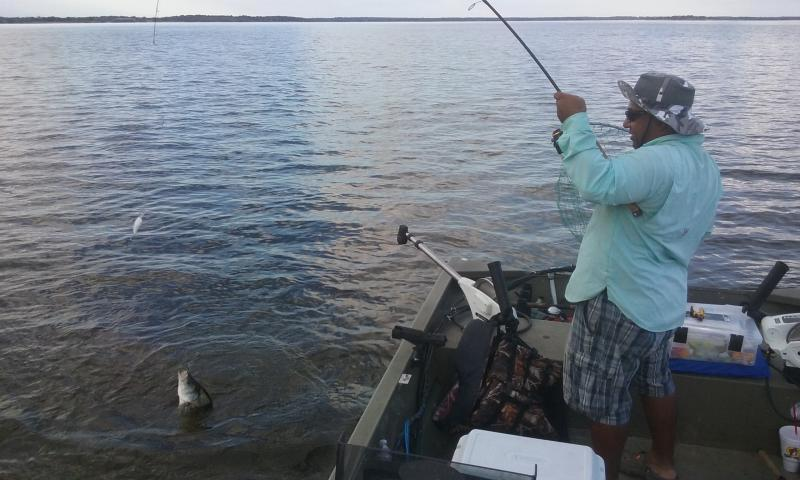 Made it to whitney whites hybrids striper texas for Lake whitney fishing report