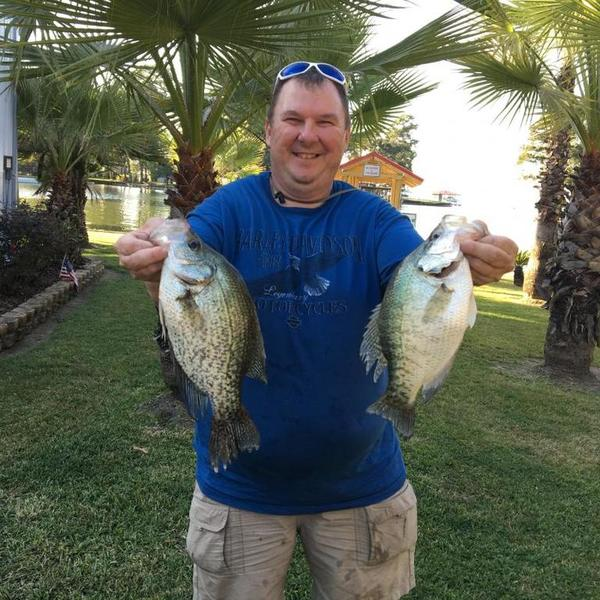Lake livingston crappie crappie fishing texas fishing for Lake livingston fishing report