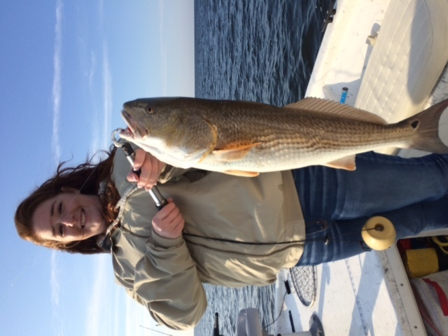 Schools of reds from one side to the other on sabine lake for Texas saltwater fishing report