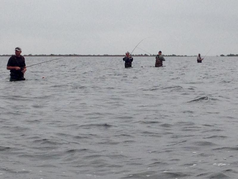 Wade fishing report day 2 and 3 seadrift tx inshore for Fishing report texas
