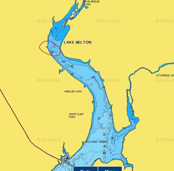 Belton lake whites hybrids striper texas fishing forum for Belton lake fishing