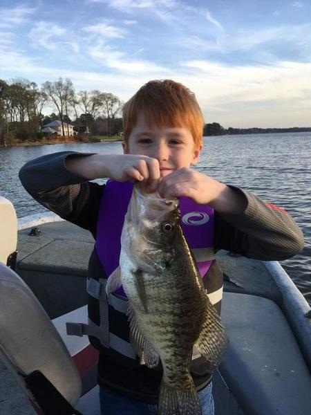 Grandkids and crappie crappie fishing texas fishing forum for Lake belton fishing report