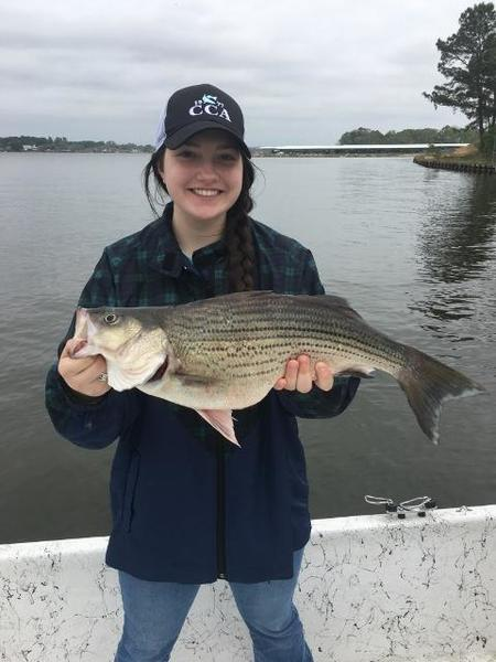 Spring break smack down smiles and piles whites for Lake livingston fishing report
