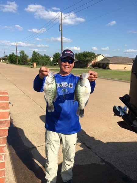 Lavon crappie report crappie fishing texas fishing forum for Crappie fishing report