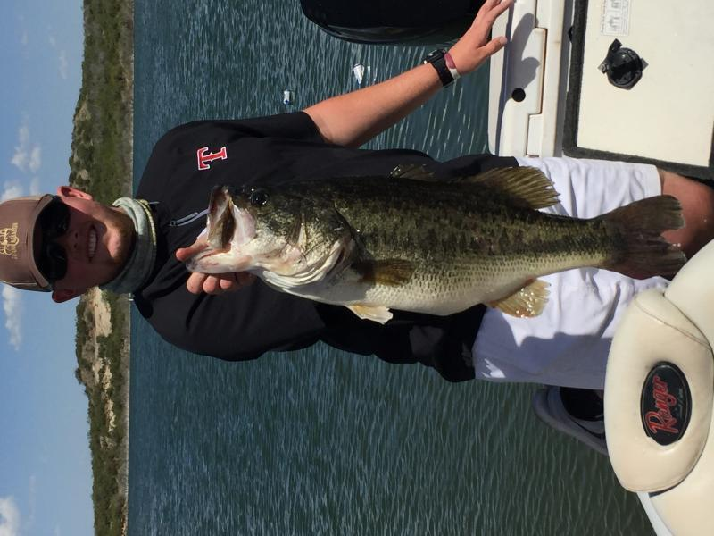 taxidermy bass fishing texas fishing forum