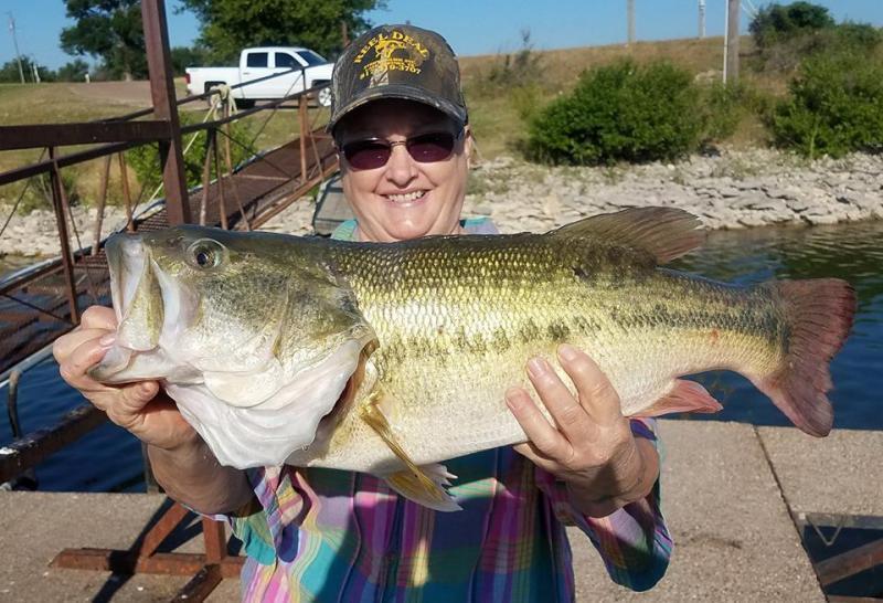 Bohemian bass classic bass fishing texas fishing forum for Bass fishing texas