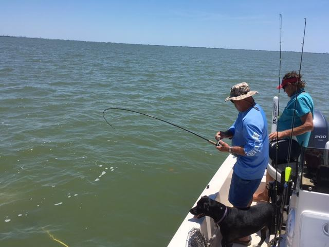 Good trip east and west galveston bay saltwater for Texas saltwater fishing report