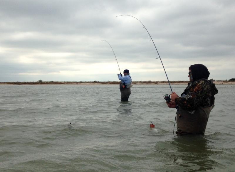 Wade fishing report seadrift tx 11 9 17 inshore for Fishing report texas