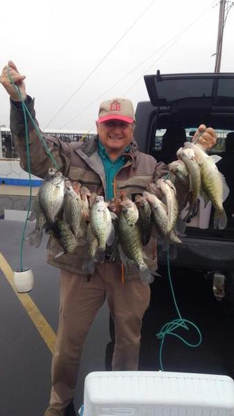 Lake Conroe Crappie 2-14-18 | Crappie Fishing | Texas Fishing Forum