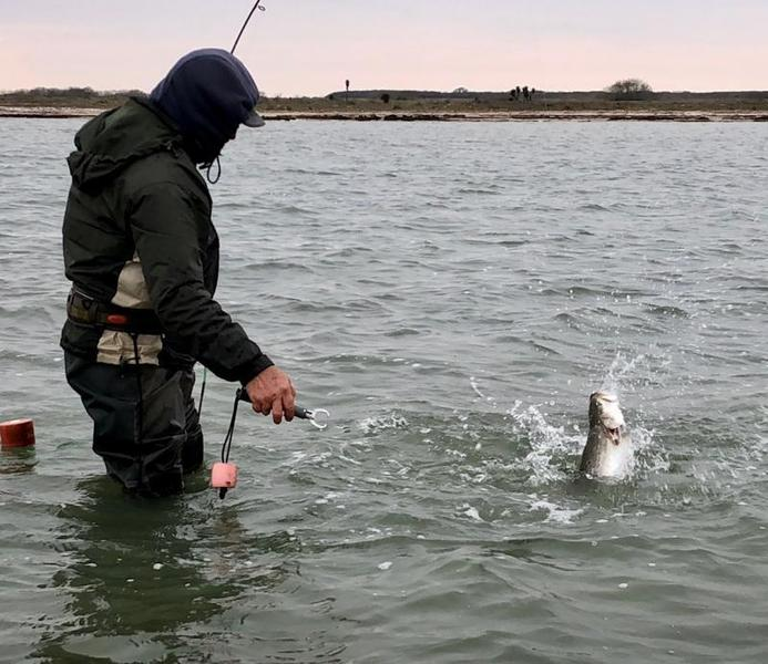Port mansfield wade fishing report 2 7 18 2 13 18 for 13 fishing tx