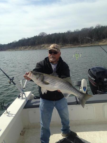 Lake texoma striper whites hybrids striper texas for Fishing guides on lake texoma